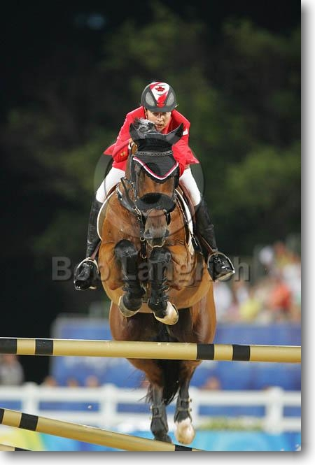Bob Langrish Equestrian Photographer Images