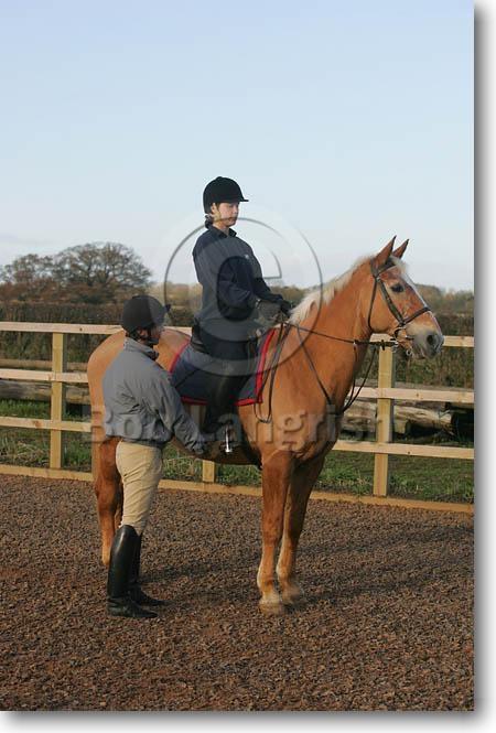 pferde pflegen und reiten