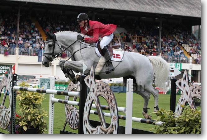 Show Jumping Horses Show Jumping Horses