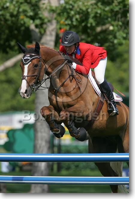 """Résultat de recherche d'images pour """"DESILVIO + SILVIO + HORSE JUMPING"""""""